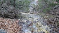 Texas Hill Country and Frio Canyon Properties with Live Water